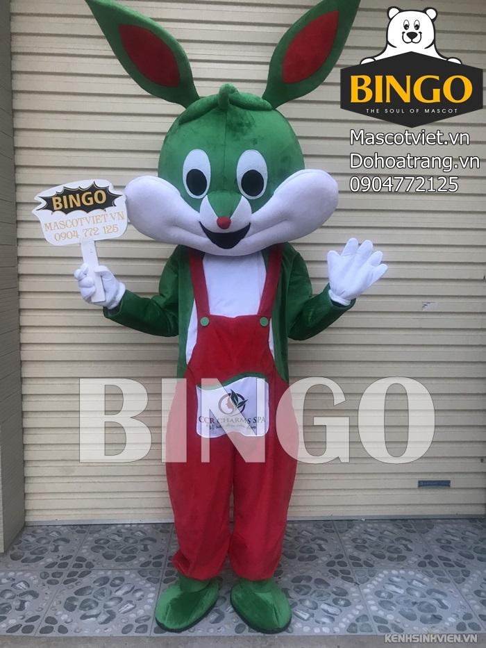 mascot-con-tho-07-bingo-costumes.jpg